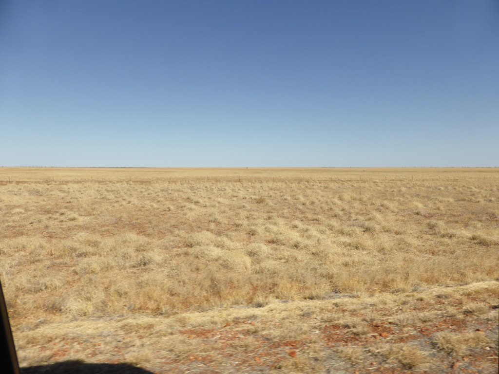 vast fields around Camooweal
