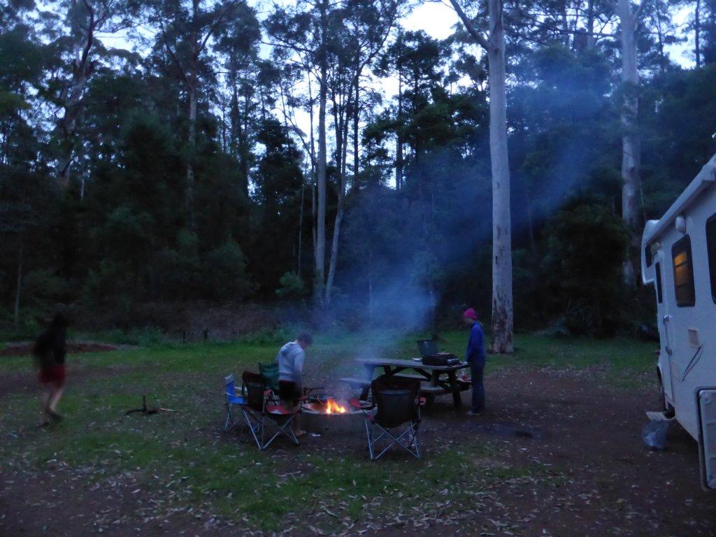 Big Brook Arboretum campsite