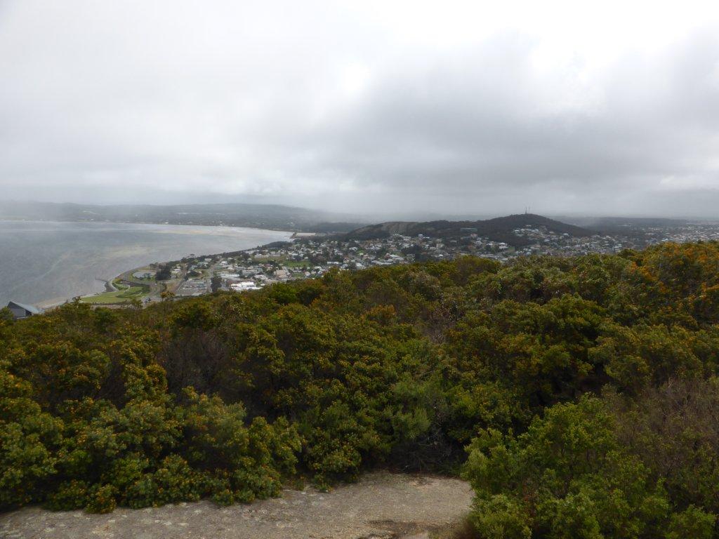 Overlooking Albany