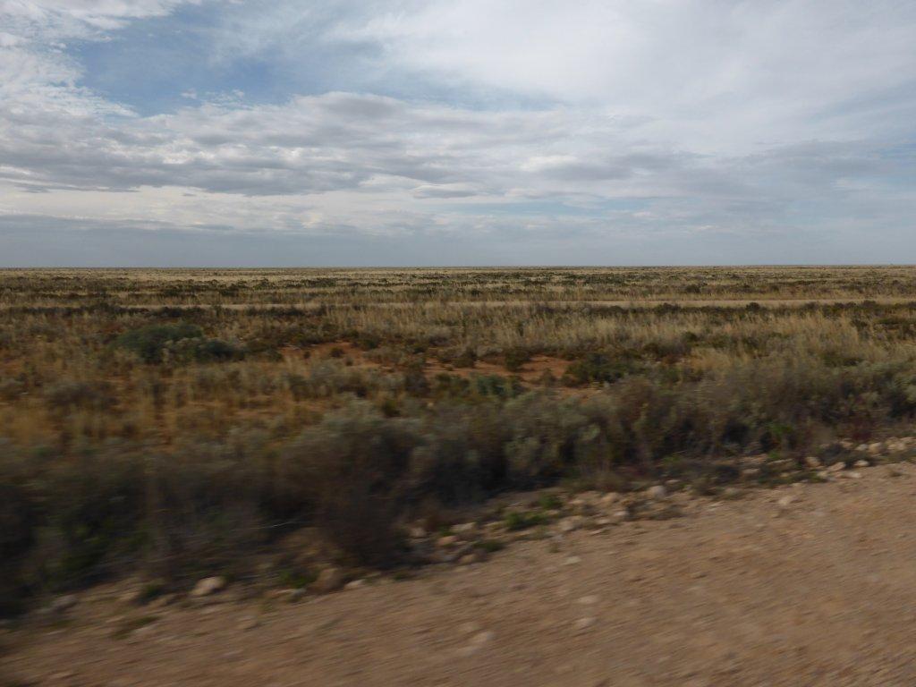 the actual Nullarbor Plain