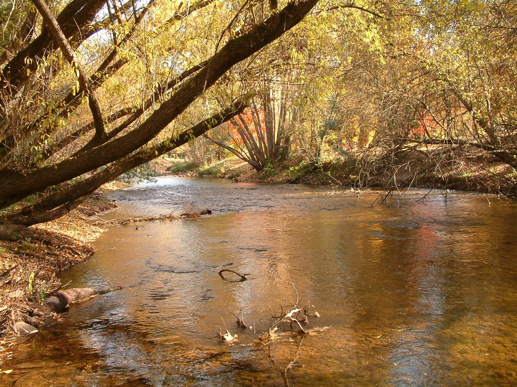 Flashback photo: the Ovens River in autumn