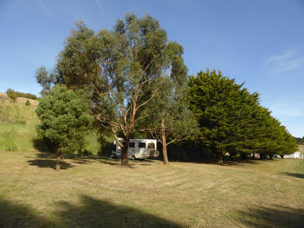 Part of the camping area at Lake Elingamite