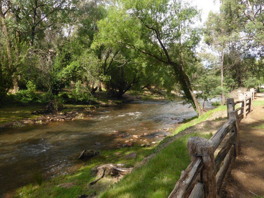 Ovens River at Bright