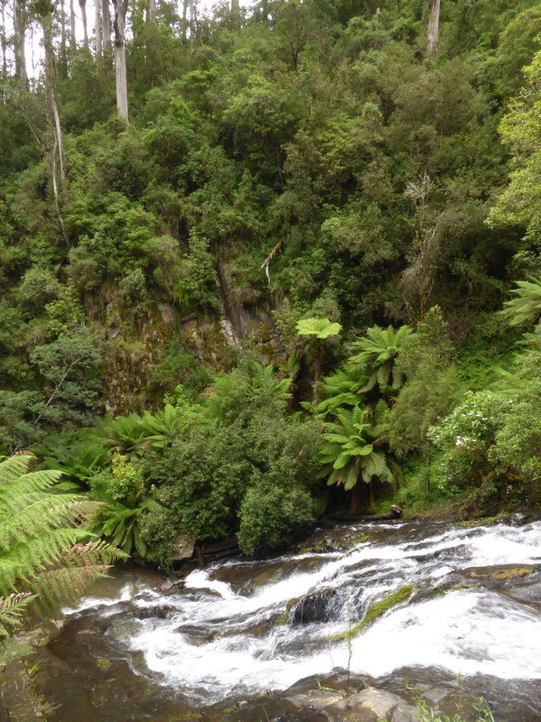 Tarra Falls