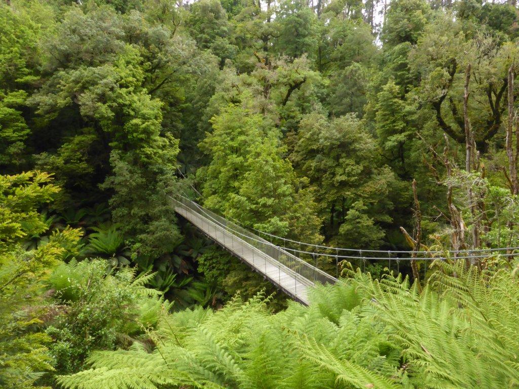 Corrigans Suspension Bridge