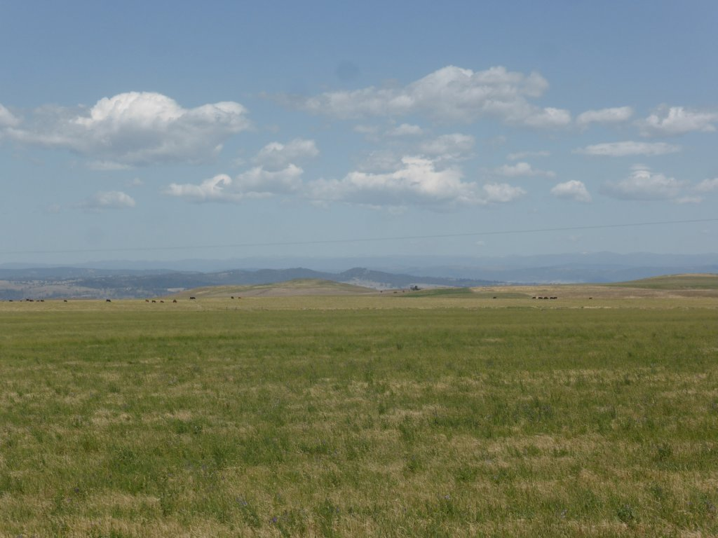 looking over to Mt Kosciuszko Range in the distance